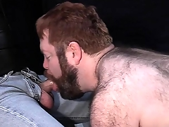 Big hairy dude loves to be leashed groove on a snare increased by suck hard cock